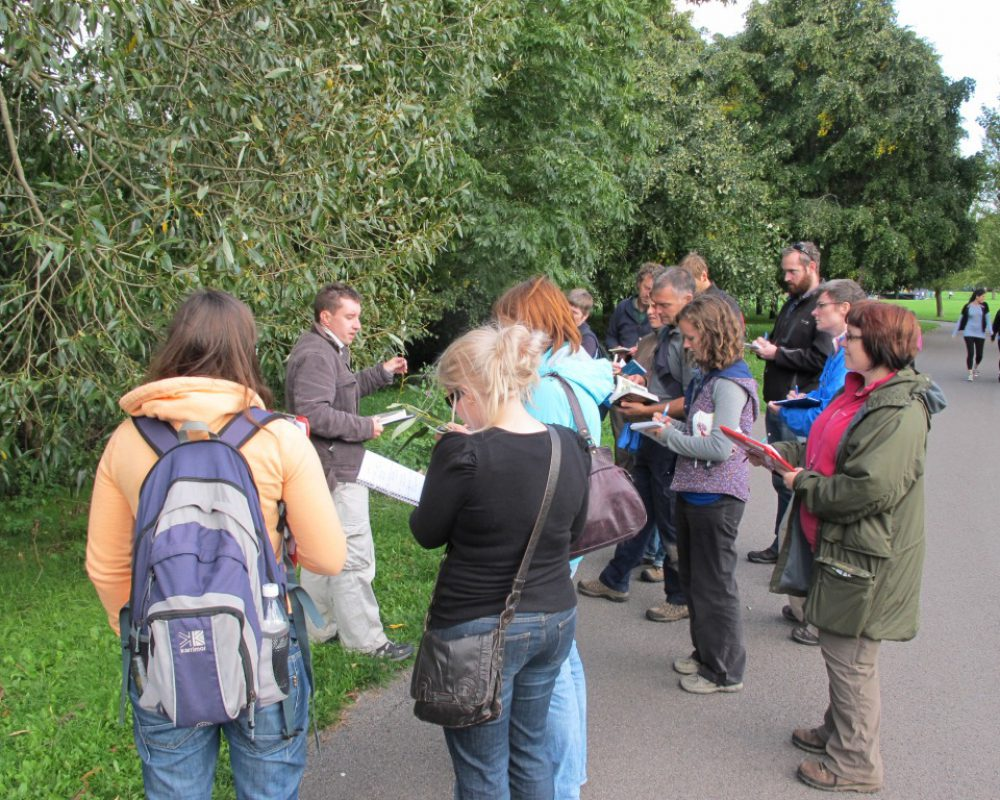Biodiversity training e.g. CIEEM tree identification workshop in Southampton with John Poland